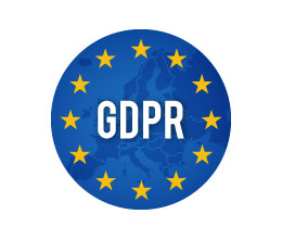 gdpr ecommerce professionale